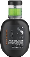 Alfaparf Milano Semi di Lino Sublime Cellula Madre Restructuring Multiplier 150 ml